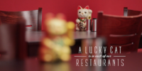 pf-changs-a-lucky-cat-is-in-every-restaurant